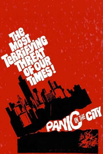 Panic in the City poster