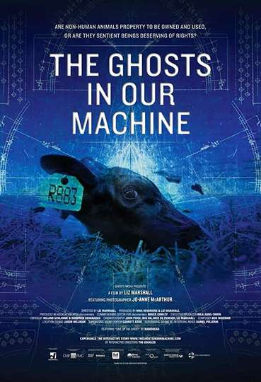 The Ghosts in Our Machine poster