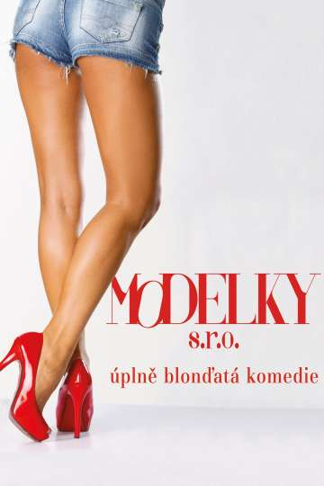 Modelky s.r.o. poster