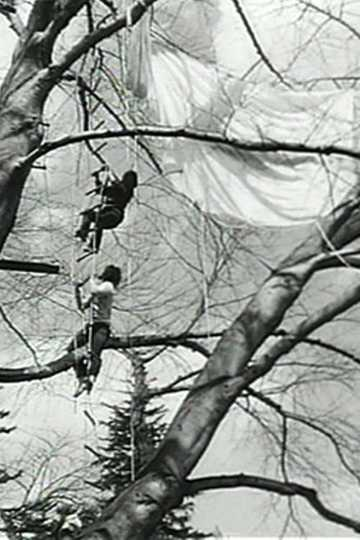 Tree Dance Poster