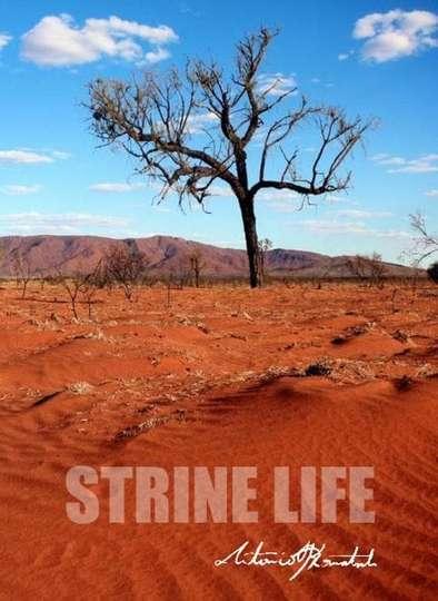 Strine Life poster