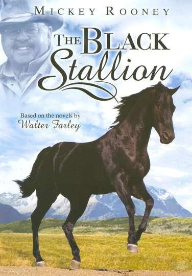 Adventures of the Black Stallion poster