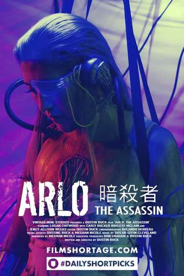 ARLO: THE ASSASSIN poster