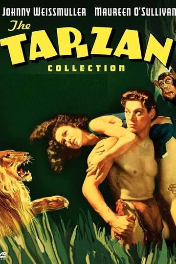 Tarzan: Silver Screen King of the Jungle poster