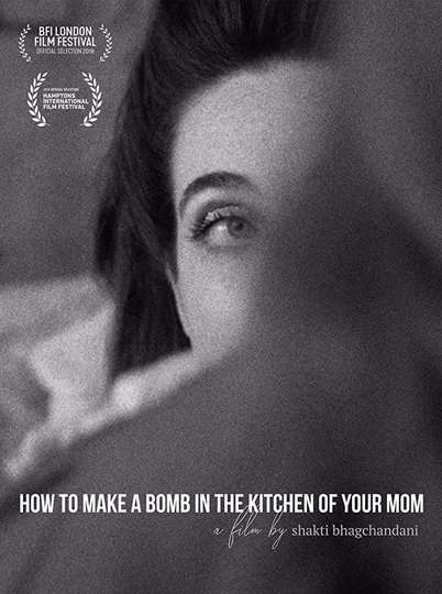How to Make a Bomb in the Kitchen of Your Mom