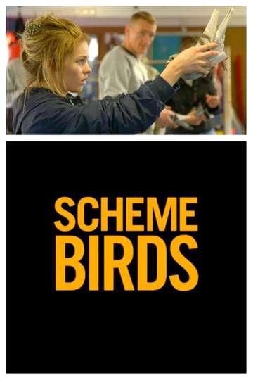 Scheme Birds poster