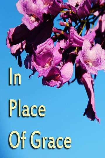 In Place of Grace poster