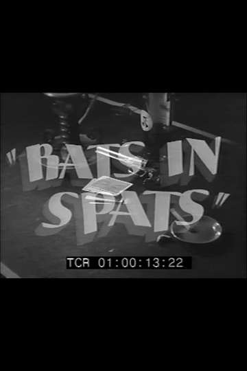 Rats in Spats poster