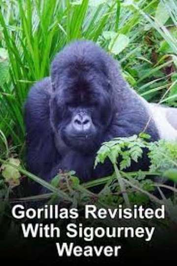 Gorillas Revisited with Sigourney Weaver poster