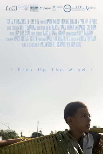 Pick up the Wind