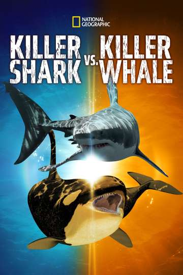 Killer Shark Vs. Killer Whale