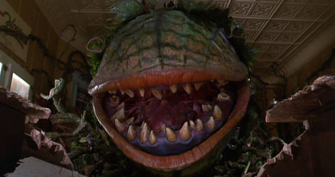 18 Things You Never Knew About Little Shop Of Horrors